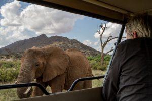 12-Day Amboseli & Tsavo East National Parks, Maasai Mara,  and Beach Safari