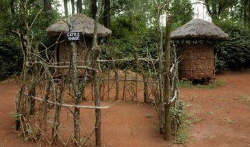 Nairobi National Park, Karen Blixen Museum and other Attractions Combi – 1 Day